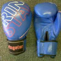 Ringstar Boxing Gloves