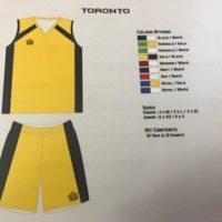 Admiral Toronto Volleyball Kit / Basketball Kit Junior